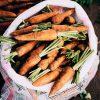 carrots-1853509